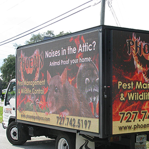 Pest Control Truck Passing By Tarpon Springs FL